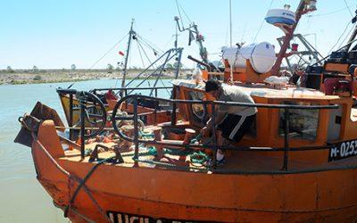 Rusia habilitó la importación de 25 nuevas empresas pesqueras argentinas