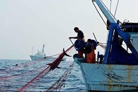 Argentina suma iniciativas en el plano regional para combatir la pesca ilegal
