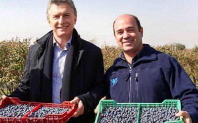 Macri visitó campos de arándanos en Tucumán y se comprometió a reducir alícuotas de exportación
