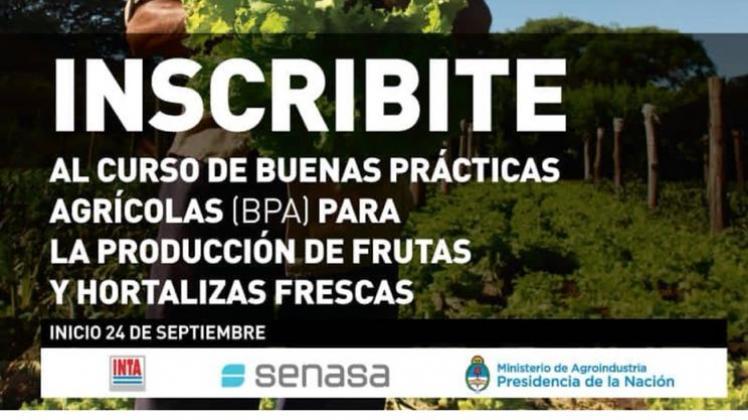 Comenzó plan nacional de capacitación para implementar Buenas Prácticas Agrícolas en frutas y hortalizas