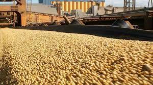 Cereales y oleaginosas lideran ranking de exportaciones