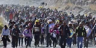 Miles de peregrinos llegan a pie con devoción a la Catedral de Salta para honrar al Señor y la Virgen del Milagro