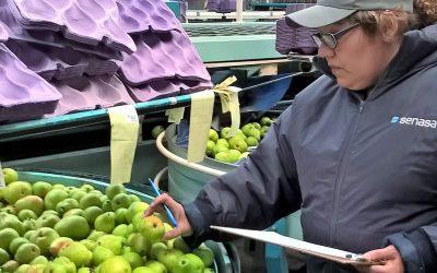Comenzó la inscripción en el RENSPA a frutihorticultores de la Patagonia