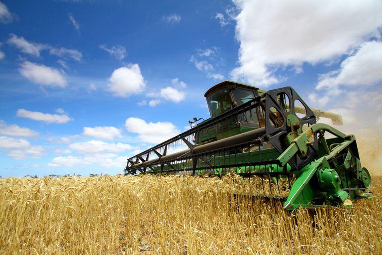 Lo más destacado de los cultivos y el tiempo a nivel internacional