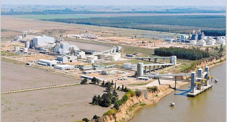 Se confirma la pérdida de valor agregado en las exportaciones de soja