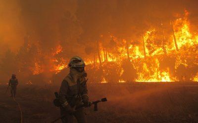 Los incendios forestales crecerán exponencialmente con el cambio climático